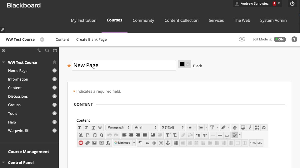 New Page interface with text editor